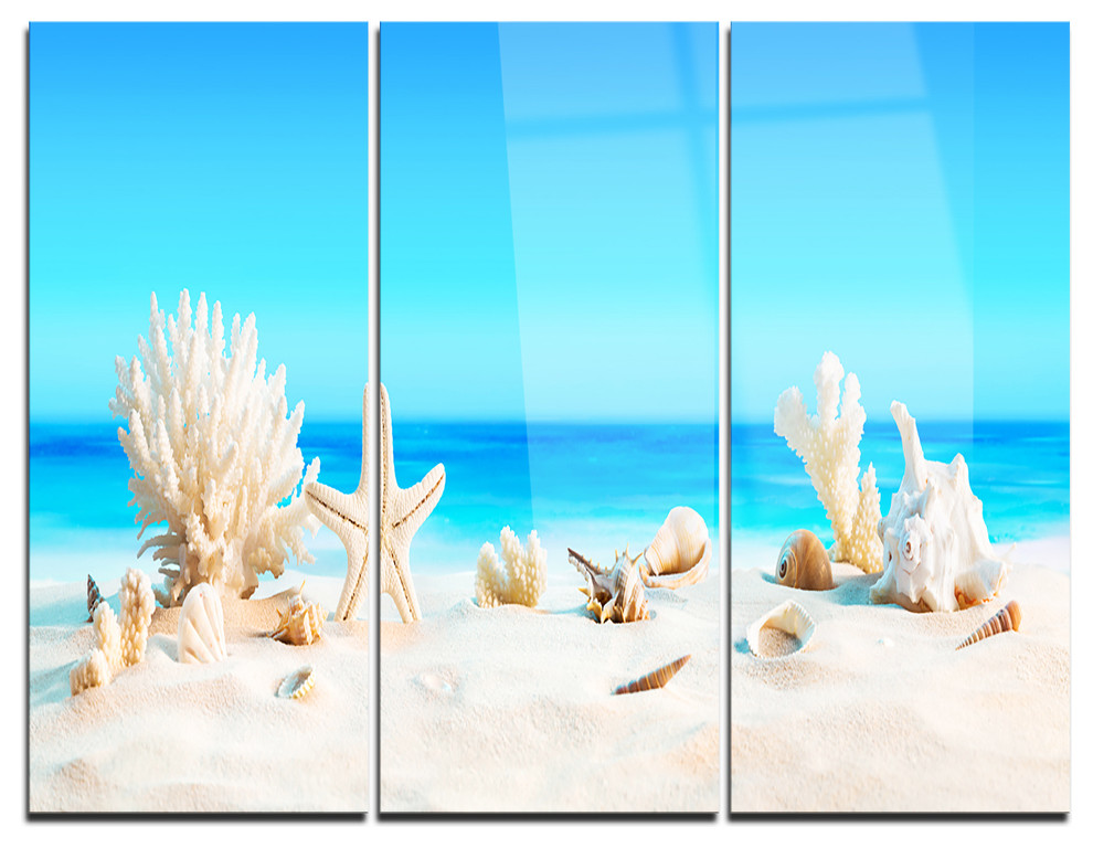 Seashore Glossy Metal Wall Art 28 H/ x/ 60 W/ x/ 1 D 5PE Blue Designart Large Sea Shells on Sand