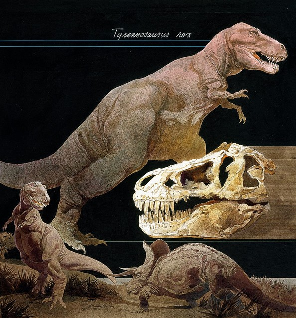 Tyrannosaurus rex dinosaur wallpaper wall mural self for Dinosaur land wallpaper mural