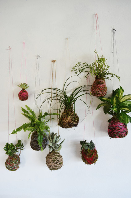 diy fabriquer des kokedama pour un jardin suspendu. Black Bedroom Furniture Sets. Home Design Ideas