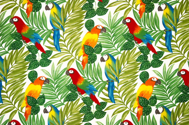 Parrot Fabric Tropical Jungle Bright Tropical Drapery