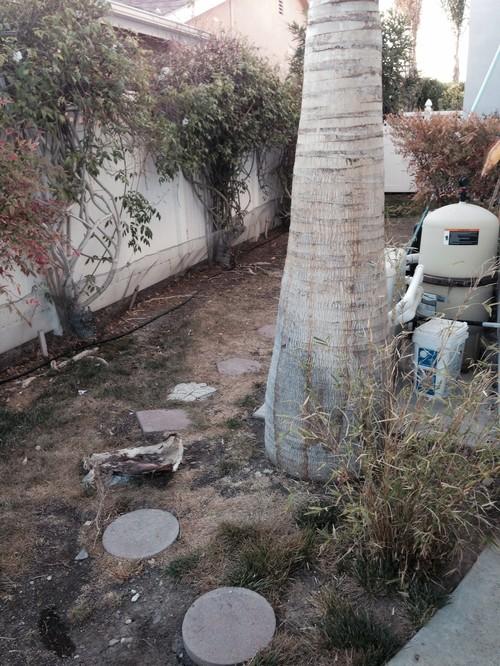 Help! Narrow side yard landscape ideas needed! on Narrow Side Yard Landscaping id=91192