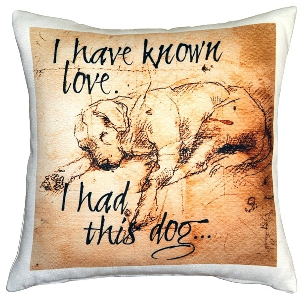 dogs i have known love sleeping lab dog pillow