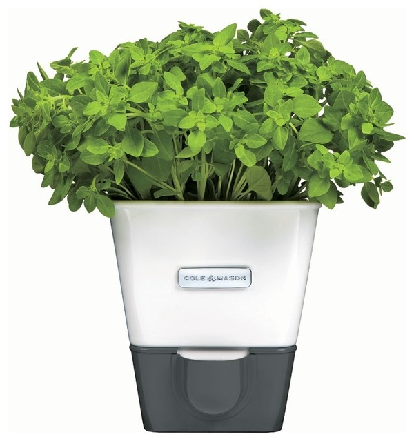 Superior Self Watering Indoor Planters Part - 6: Cole U0026 Mason Self-Watering Indoor Herb Garden Planter Contemporary-indoor- Pots-
