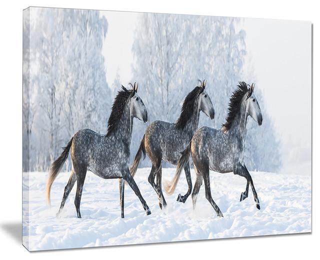 Quot Herd Of Horses Run Across Snow Quot Landscape Print Wall