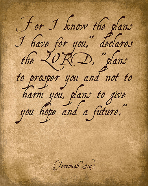 For I Know The Plans I Have For You Jeremiah 2911 Bible Verse