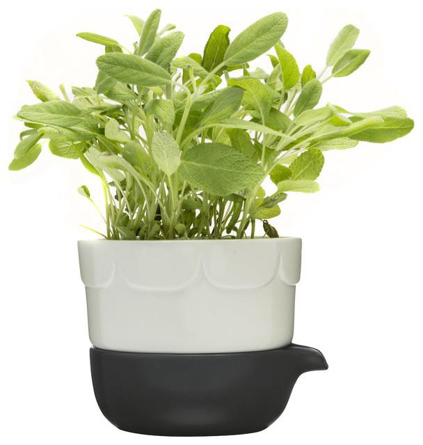 Green Herb Pot - Scandinavian - Indoor Pots And Planters - by ...