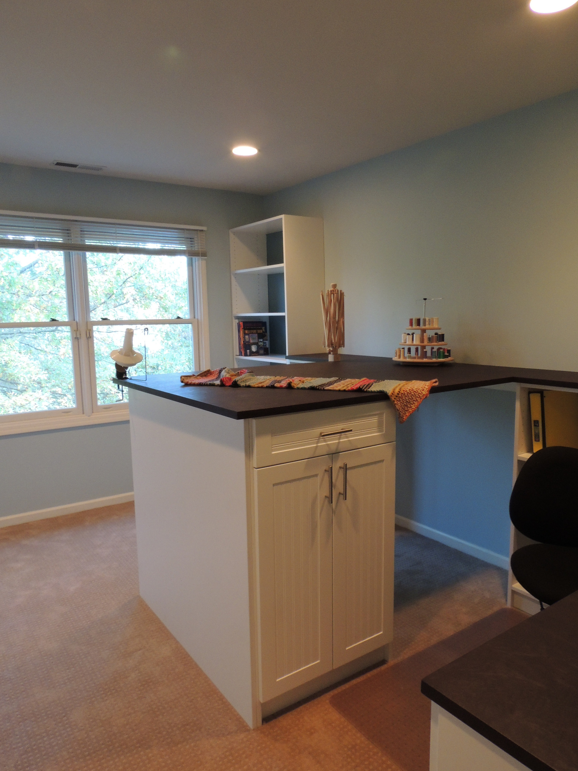CRAFT ROOM/HOME OFFICE