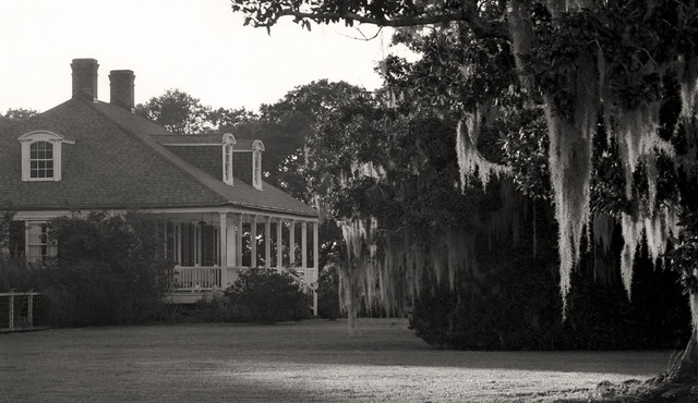 Evergreen Plantation New Orleans Louisiana Fine Art Black and White ...