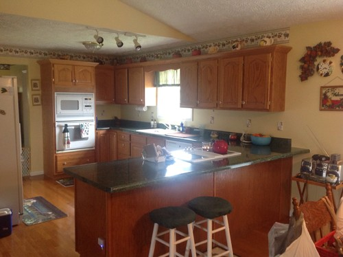Complete Kitchen Remodel! HELP PLEASE!