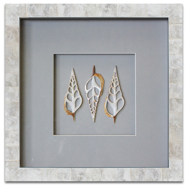 Pearls of the sea pearl in capiz shell frame tibia shells wall accents by wjc design - Wall decoration with pearls ...