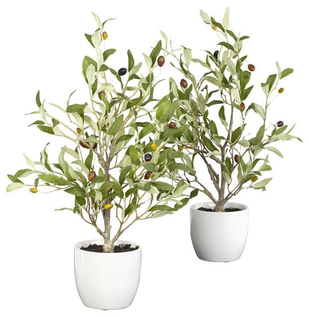 18 in. Olive Silk Tree w Vase - Set of 2