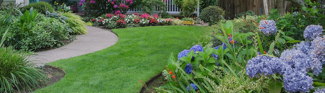 Landscaping Greensboro Nc Outdoor Goods