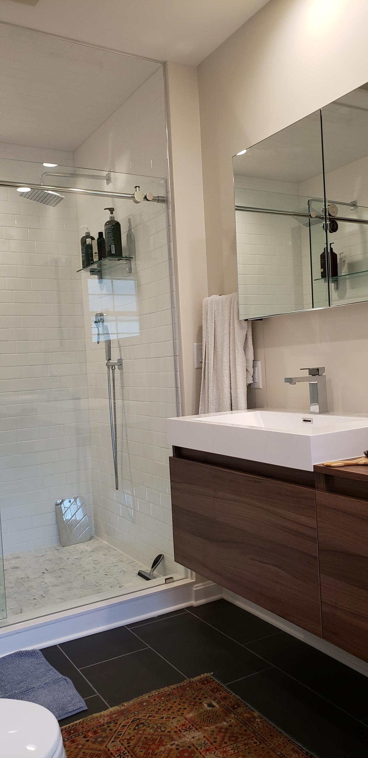 Euro Modern Master Bath