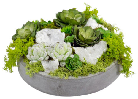 succulents and quartz in concrete bowl green and white traditional