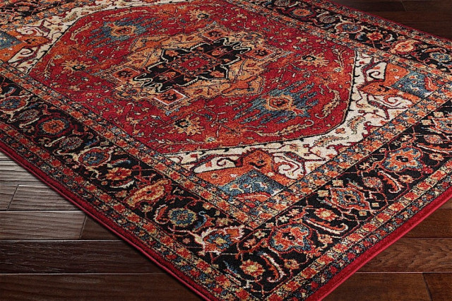 Serapi Traditional Dark Red Black Area Rug Mediterranean Area Rugs By Rugpal Houzz