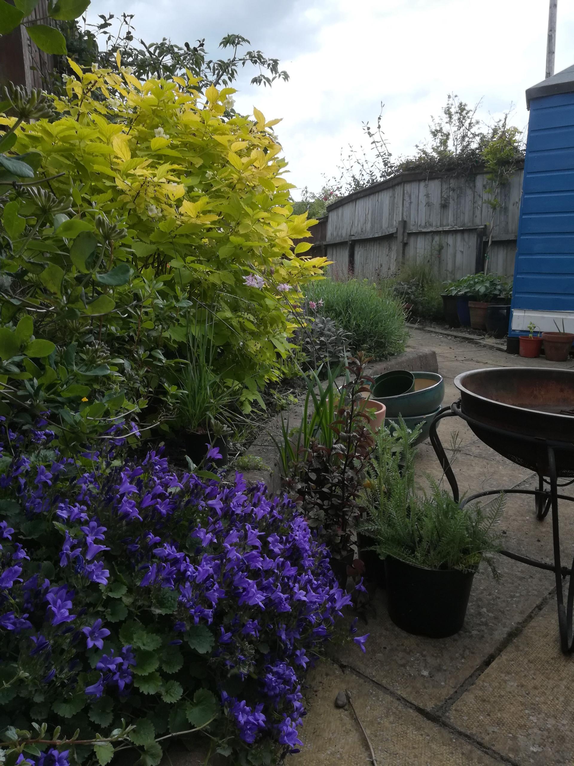Newtongrange Garden Design