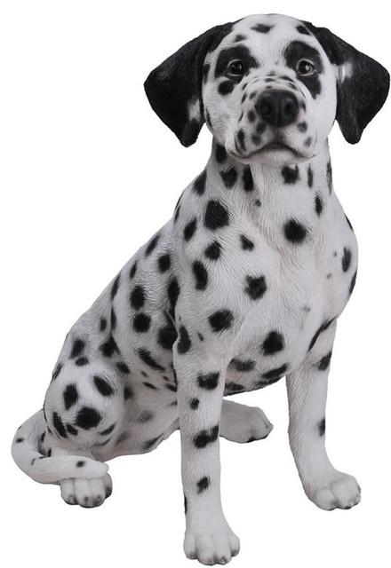Realistic Dalmatian Dog Garden Statue 20 Transitional Garden