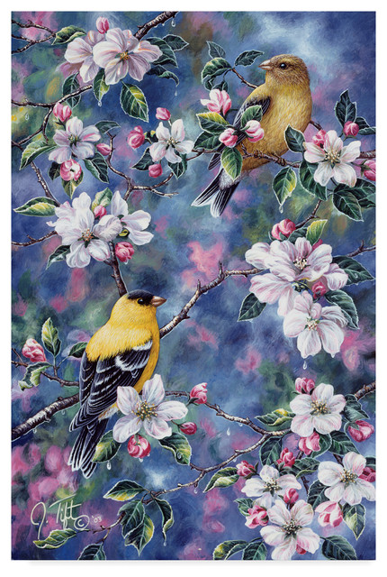 Jeff Tift 'Gold Finch And Blossoms' Canvas Art, 32
