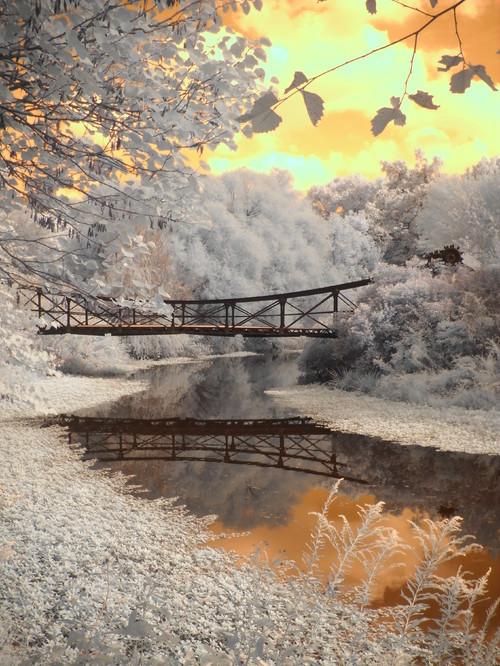 houzz Image - Forest Park Bridge Modern Kunst | Veränderung
