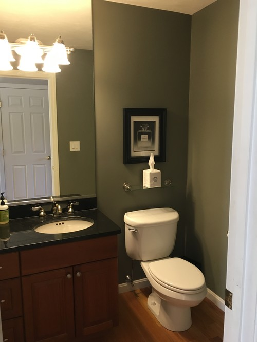 Windowless powder room color for Paint colors for powder rooms