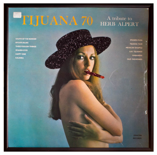 Glittered Herb Alpert Tijuana 70 album - Contemporary - Artwork - by mmm designs