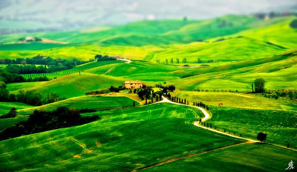 """Tuscany??_?S Green Scapes"" Art Print, Acrylic Face Mount, Medium"