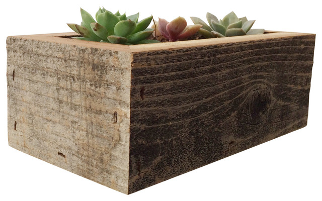 Threesie Succulent Box - Rustic - Indoor Pots And Planters - by ...