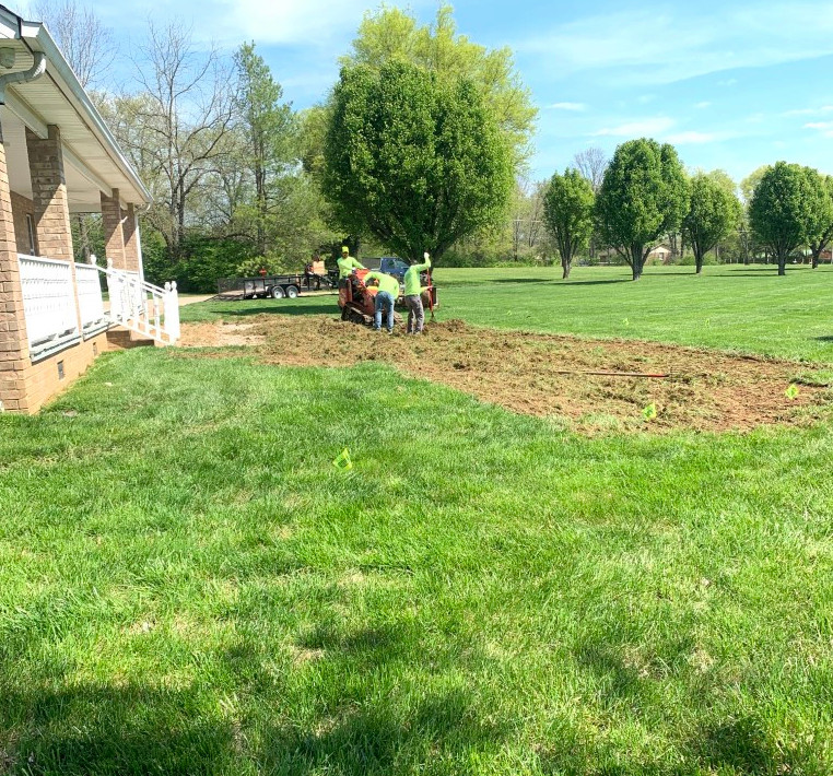 Removal of the lawn
