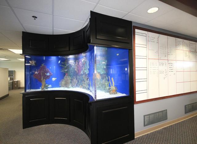 modern fish tank design built in fish tank