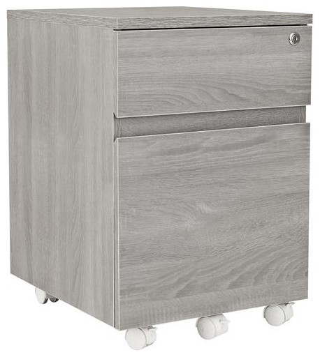 Techni Mobili Rolling 2-Drawer Vertical Filing Cabinet, Gray.