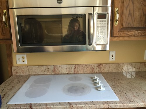 Need Help With Raising Microwave Vs Nice Vent Hood