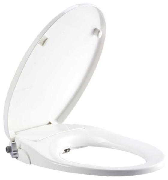 Pleasant Non Electric Bidet Seat Elongated Telescoping Ibusinesslaw Wood Chair Design Ideas Ibusinesslaworg