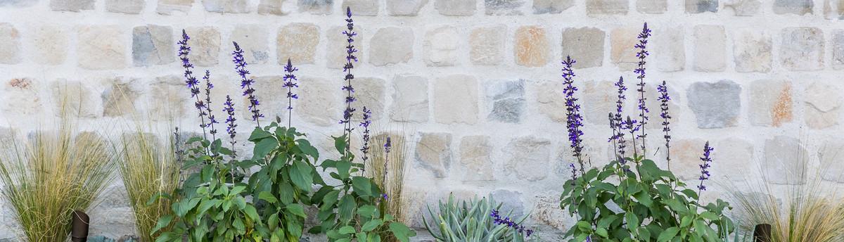 Garden Studio - Corona del Mar, CA, US 92625