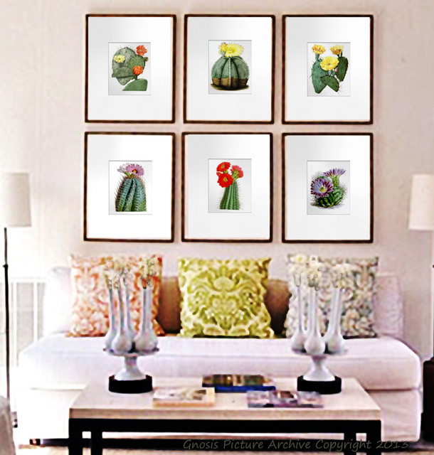 Set Of 6 Wall Art Prints Flowering Southwestern Cacti (Cactus) Modern  Artwork Part 90