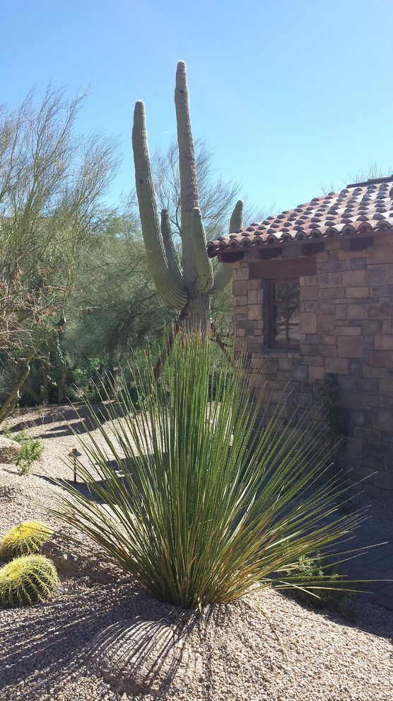 Saguaro Forest Guest Suite Addition