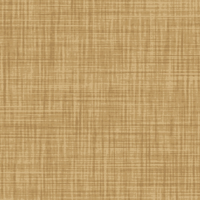 Color Weave Light Brown Fabric, 6 Yards