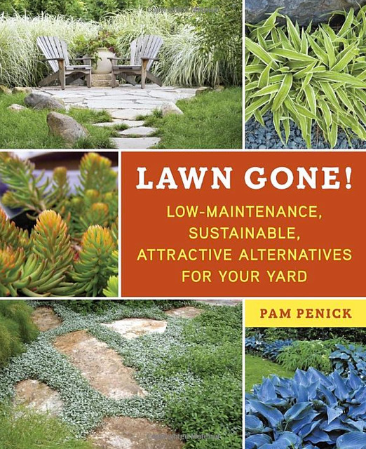 Lawn Gone!: Low-Maintenance, Sustainable, Attractive Alternatives for Your Yard: