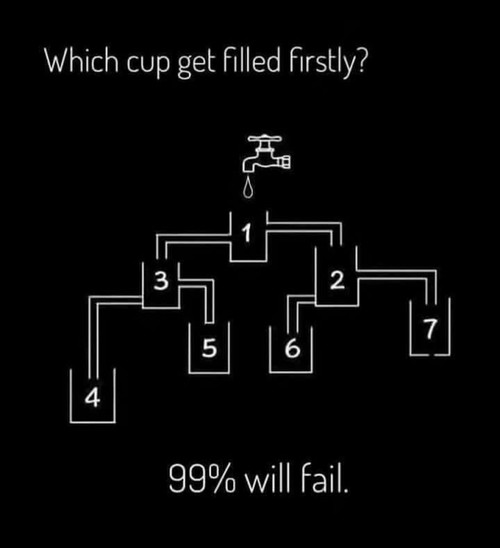 Which Cup Gets Filled First