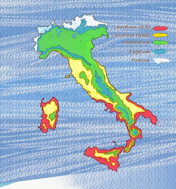 Italia Climatica Cartina.Come Riconoscere La Zona Climatica Del Tuo Giardino