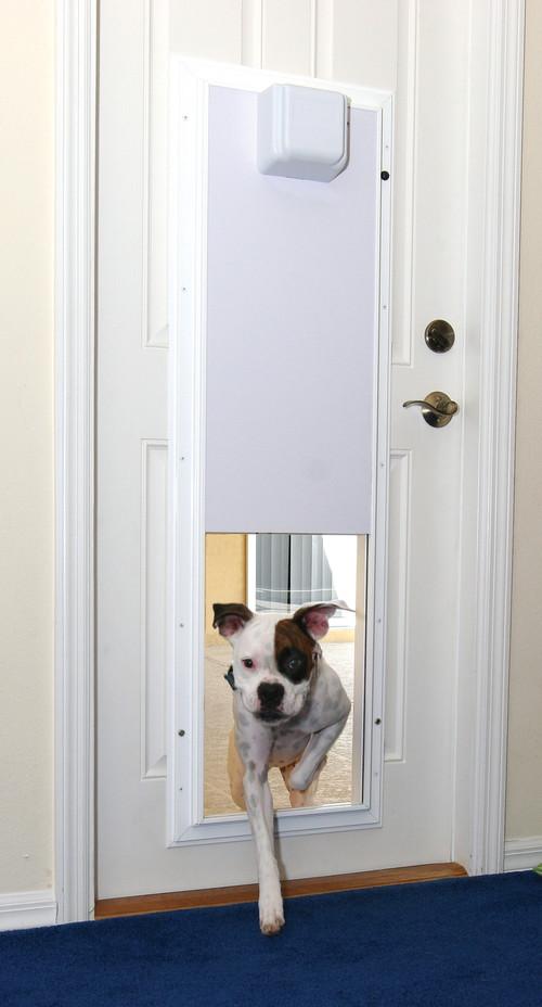 apri porta