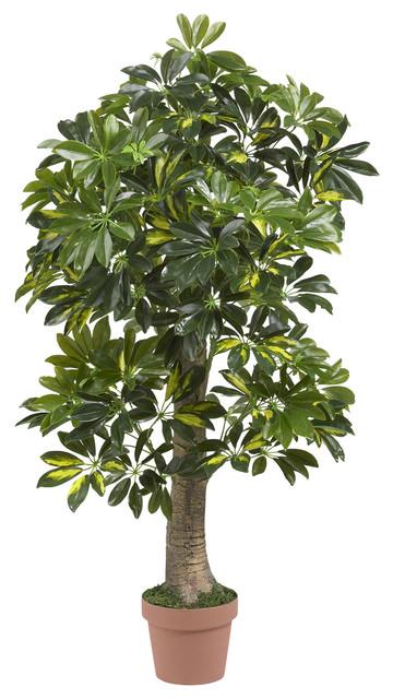 """4"""" Schefflera Silk Tree, Real Touch"""