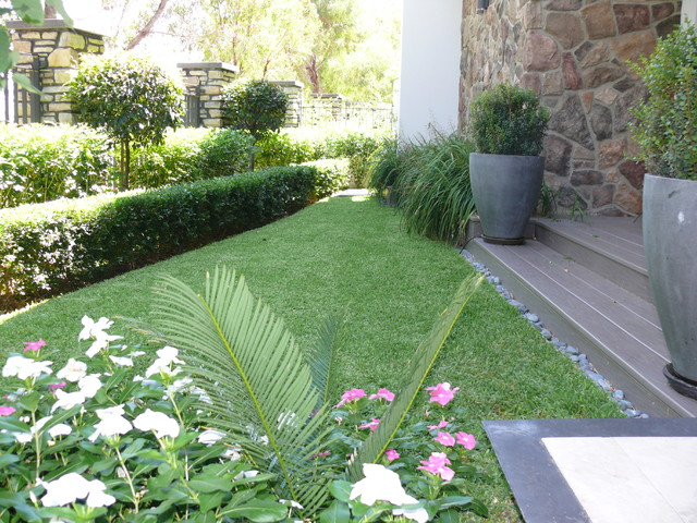 Formal Front Garden - Contemporary - Perth - by Nouveau ...