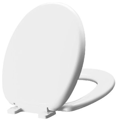 Fantastic Mirabelle Mirtssc100 Slow Close Round Front Slow Close Toilet Seat Biscuit Squirreltailoven Fun Painted Chair Ideas Images Squirreltailovenorg