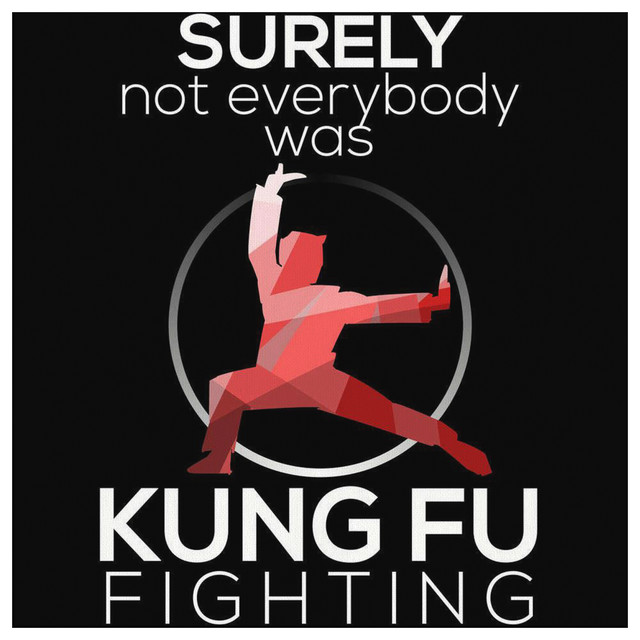 Surely Not Everybody Was Kung Fu Fighting Canvas, 40x40