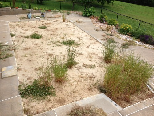 Landscape a filled in pool area for Easy upkeep landscaping