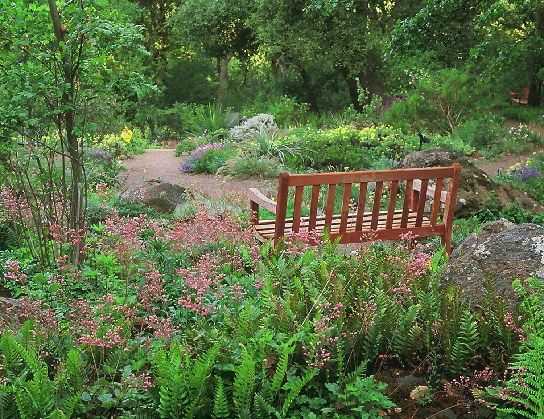 Woodland Garden Settings