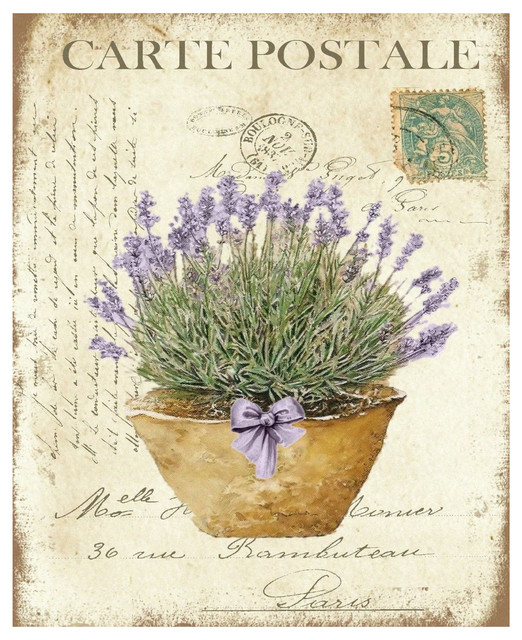 Vintage French Lavender In Rustic Clay Pot Canvas Print Contemporary Prints And Posters By Twisted R Design