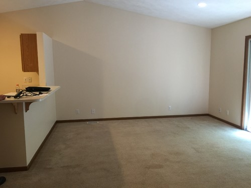Help Furnishing Decorating Empty Small Living Room Dining Room