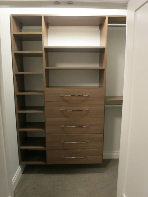 melissa jane designs the reach in closet contemporary other by