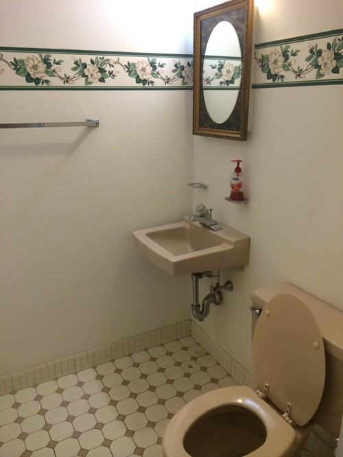ugly rental apt half bath